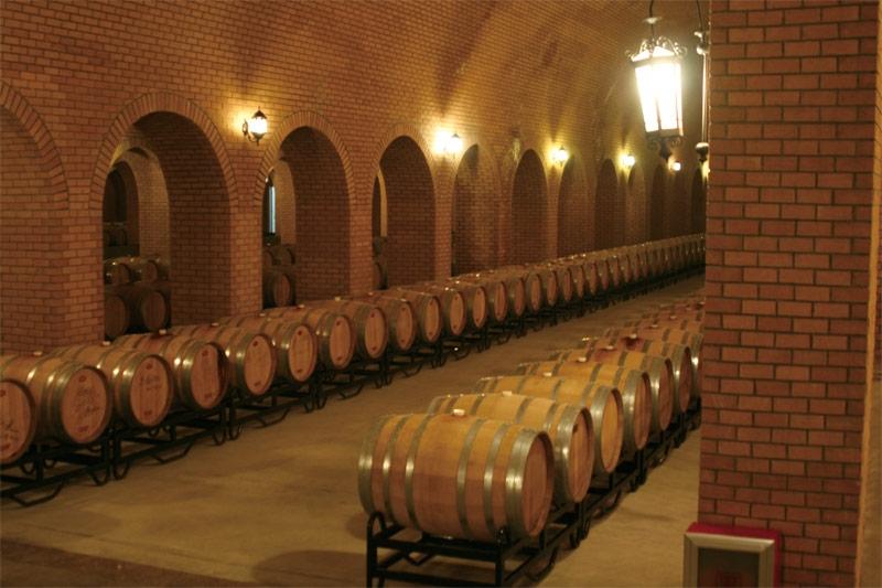 shandong-winery-visit-2.JPG
