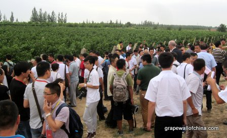 Ningxia Changyu Moser XV opening August 2013 (11)