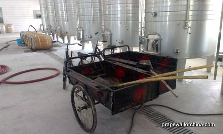 david tyney jin sha winery ningxia china (2)