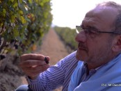 marc dworkin chief wine consultant great river hill chateau nine peaks laixi shandong china-001