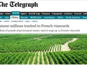telegraph china funds bordeaux vineyard story