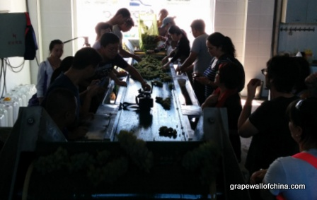 kanaan winery visit for ningxia winemakers challenge (3)