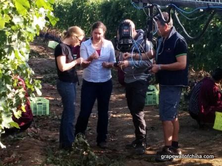 nova cadamatre ningxia winemakers challenge (2)
