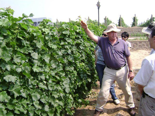 Wine maker Ken Murchison of Grace Vineyard
