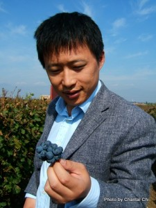 grape-wall-of-china-chantal-china-terroir-in-china-article-18