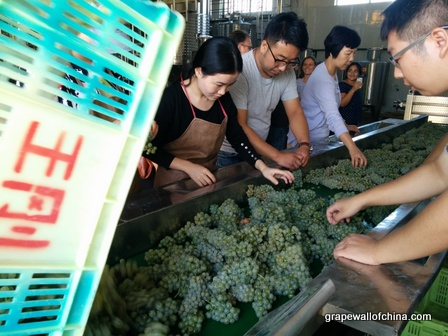 kanaan winery visit for ningxia winemakers challenge (2)