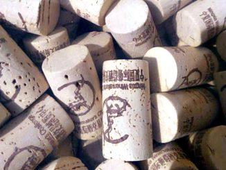 ningxia winemakers challenge
