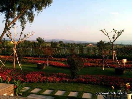 grace vineyard visit 2014 (89)